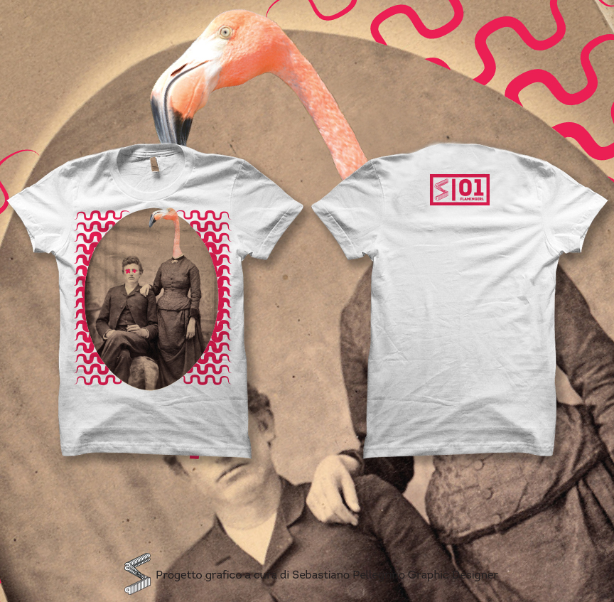 Tshirt Collection - Flamingirl